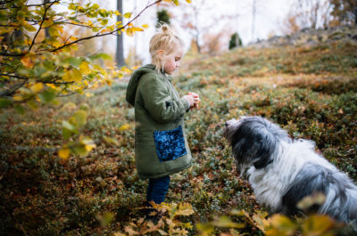 Sweden's dog culture: a story of equality and lagom